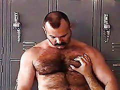 Hairy bears sucking